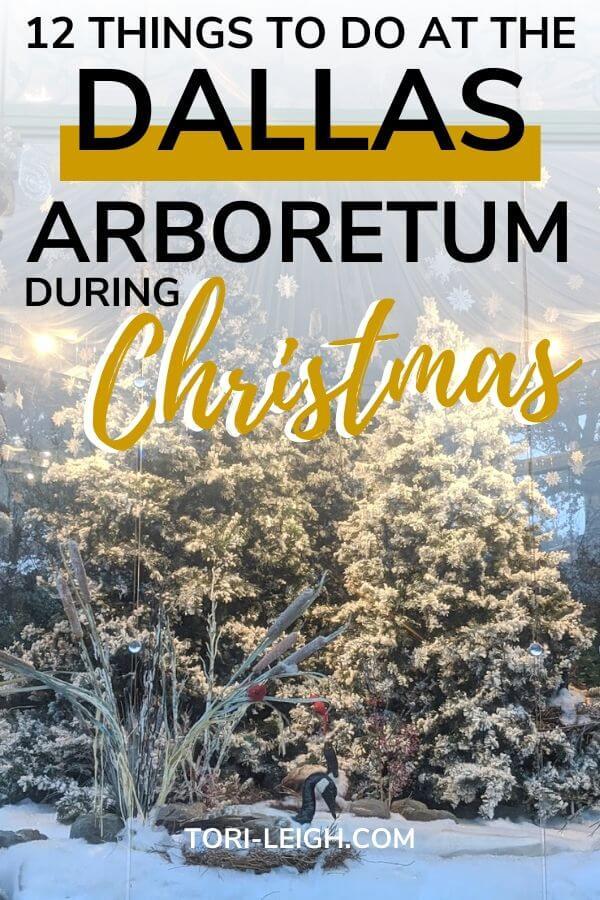 dallas arboretum at christmas