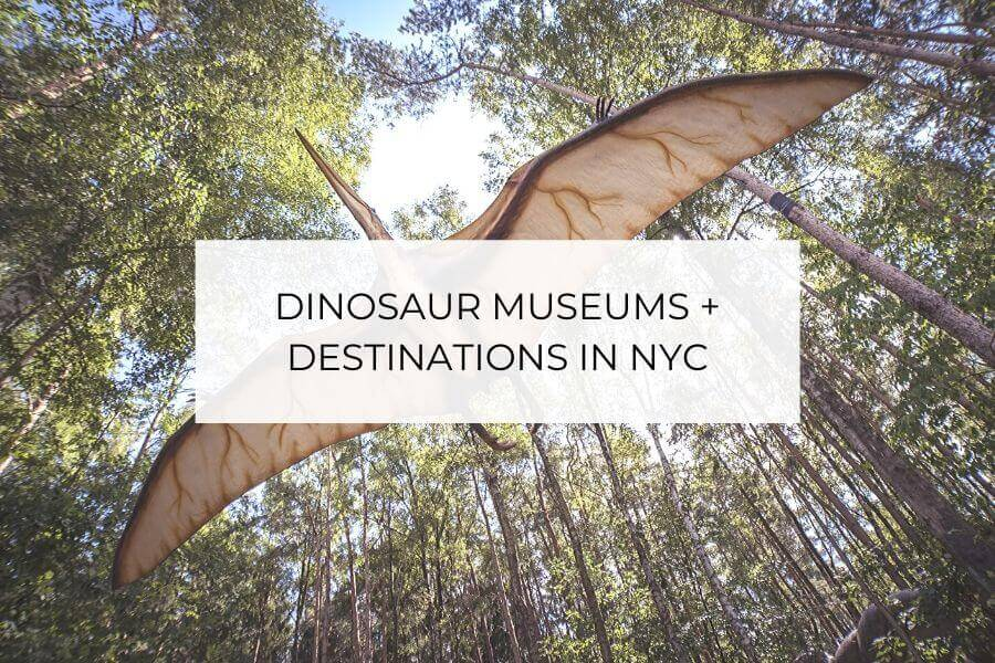 dinosaur museums in nyc