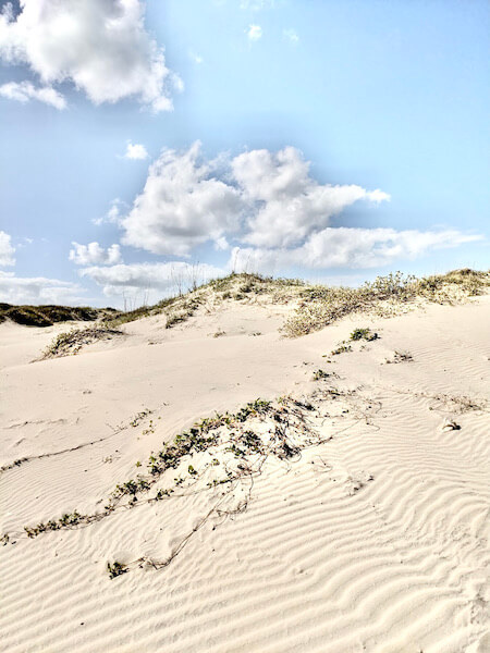 driving up to the Dunes is one of the most picturesque things to do on South Padre Island